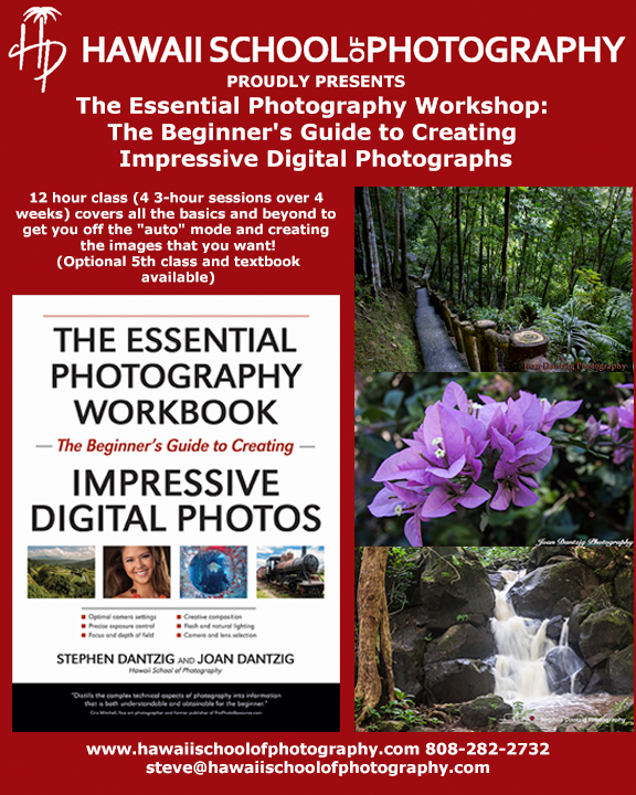 HSP Essential photography promo