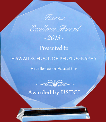 Hawaii Excellence Award