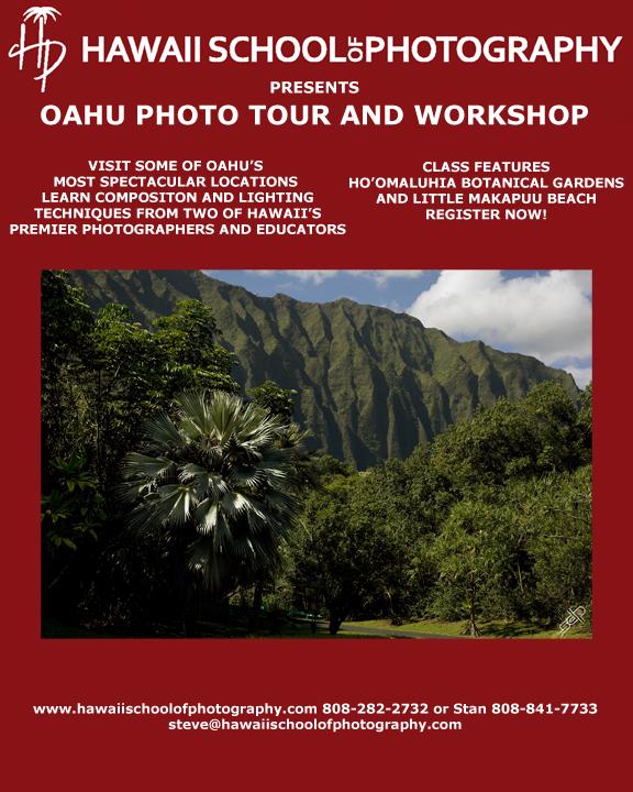 HSP Oahu promo